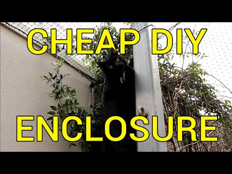 How to Build a Massive and Cheap Cat Enclosure with Basic Tools - DIY Tutorial