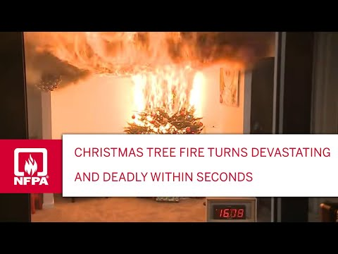 Christmas Tree Fire Turns Devastating and Deadly Within Seconds