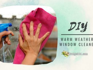 MYO Cornstarch Window Cleaner for Warm Weather