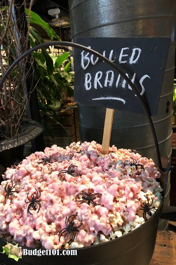 b101-boiled-brains