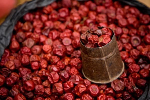 dried-cherry-pie