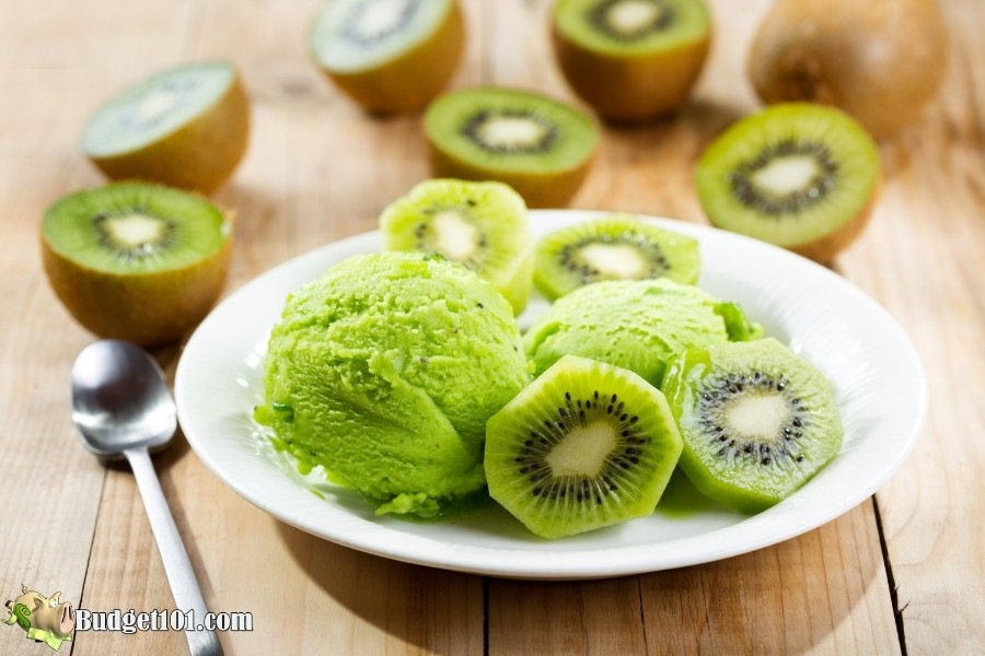 homemade kiwi ice cream budget101 1