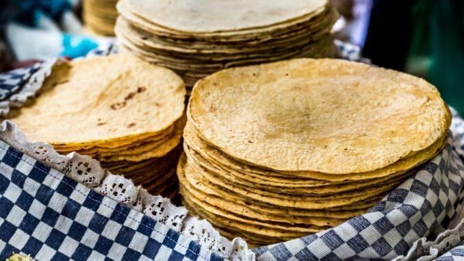 b101 homemade keto tortillas