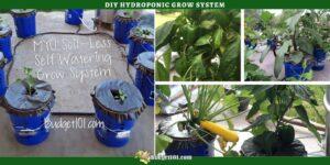 Dirt Cheap, Self Watering Grow Buckets