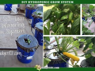 b101-hydroponic-watering-system-twitter