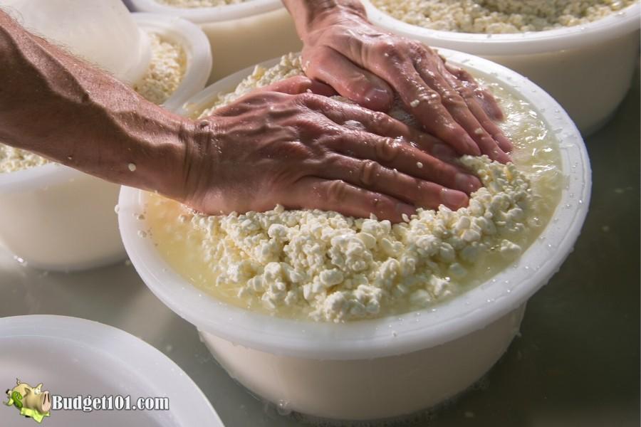b101-myo-ricotta-cheese-2