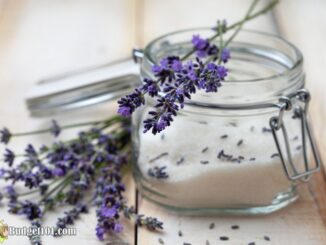 Easy Lavender Sugar Scrub Recipe