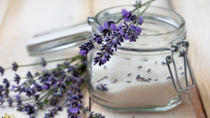 Easy Lavender Sugar Scrub Recipe