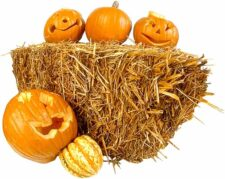 halloween safety tips to give you peace of mind on halloween