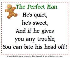 gingerbread man gift idea aka the perfect man