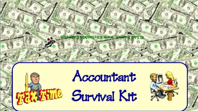Accountant or CPA Survival Kit Gift