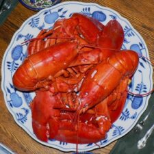 june 15th national lobster day