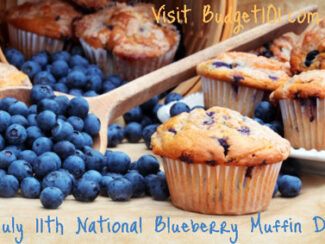 july 11th national blueberry muffin day
