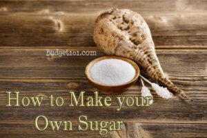 How to Grow Sugar Beets & MYO Sugar