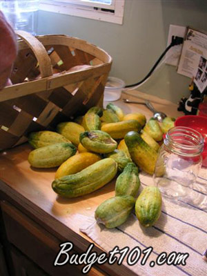 make-your-own-dill-pickles