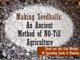 MYO Seedballs aka SeedBombs