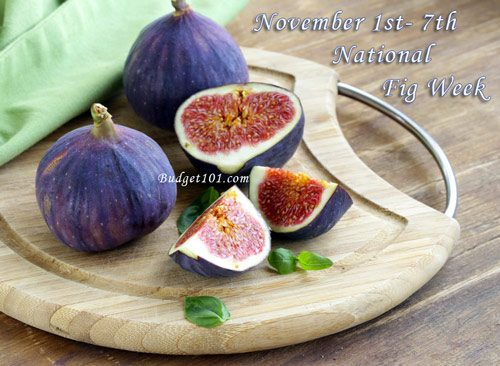 national fig week