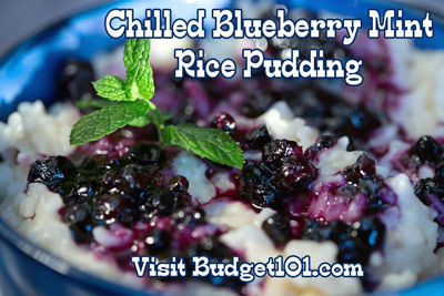 chilled blueberry mint rice pudding