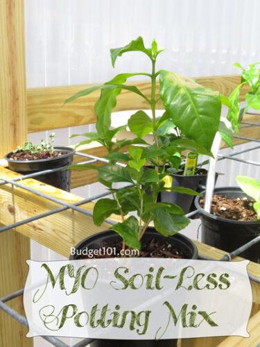 soil less potting mix