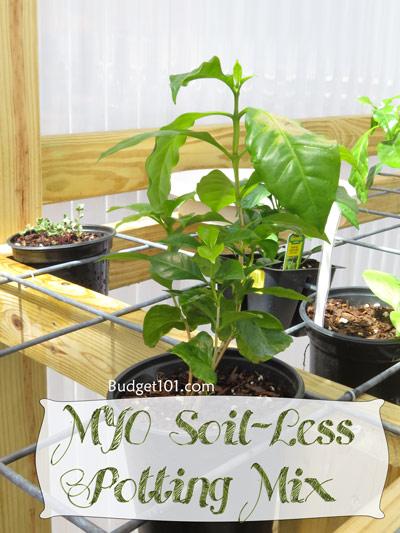 soil-less-potting-mix