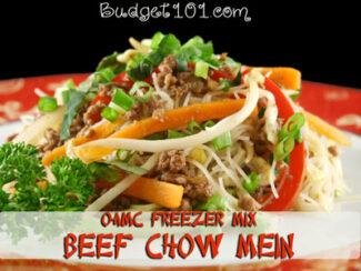freezer mix chow mein
