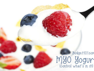 Homemade Probiotic Yogurt recipe