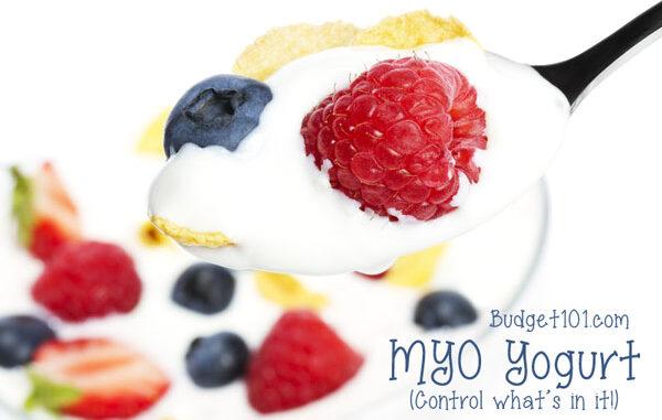 Homemade Probiotic Yogurt recipe
