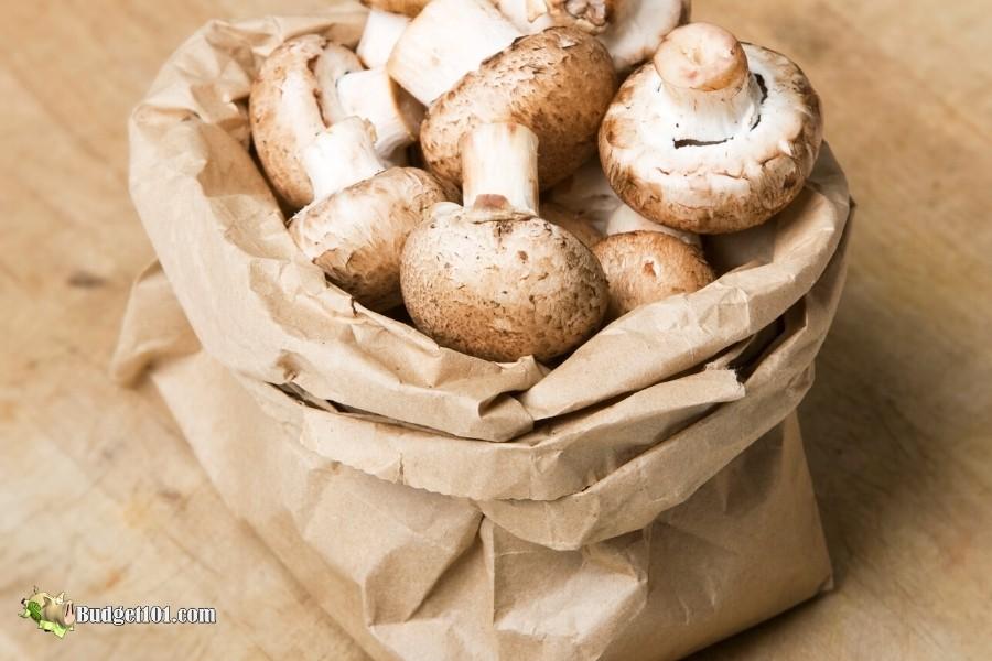 b101-mushrooms-in-bag