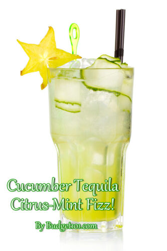 cucumber tequila citrus mint fizz