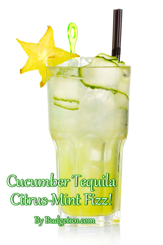 cucumber-tequila-citrus-mint-fizz
