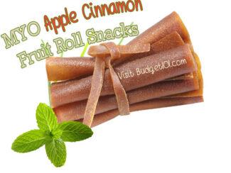 5ca00f4ec2f6d cinnamon apple fruit roll snack