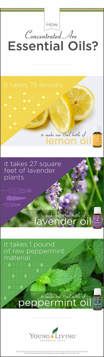 where-to-buy-essential-oils