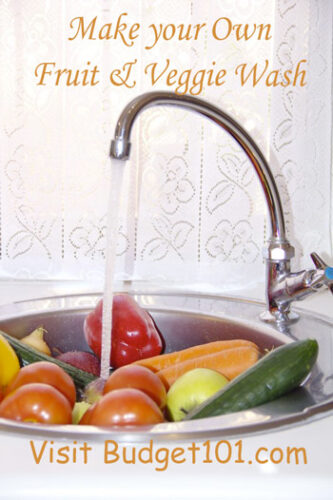 veggie fruit wash spray without vinegar