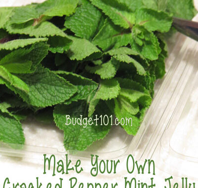 cracked pepper mint jelly