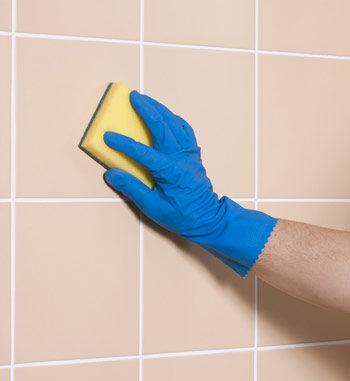 Ceramic Tile Cleaner   Household