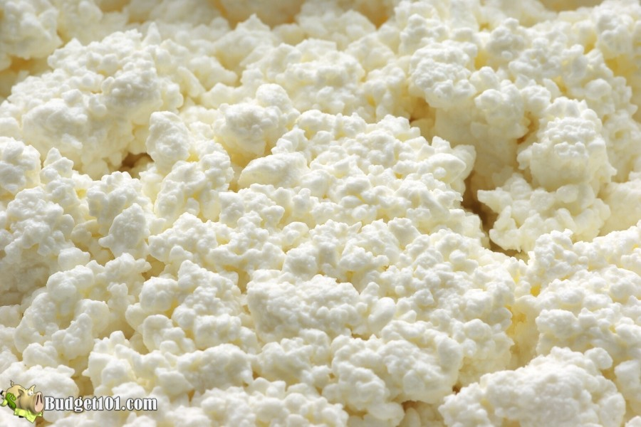 b101-homemade-cottage-cheese