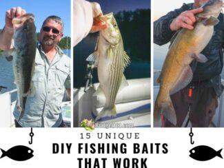 b101 15 unique fishing bait recipes sm