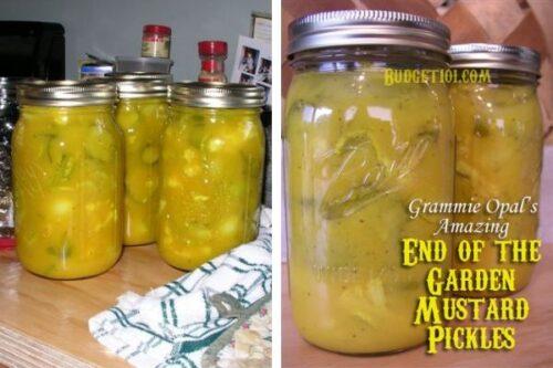 b101 mustard pickles
