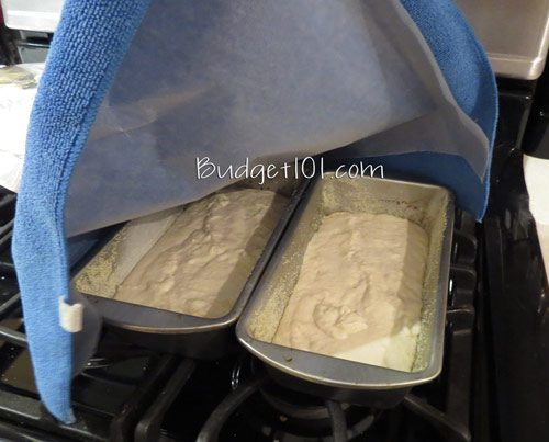 5ca00e87bb425 english muffin bread