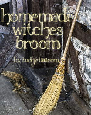 homemade witches broom