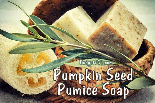 pumpkin seed pumice soap
