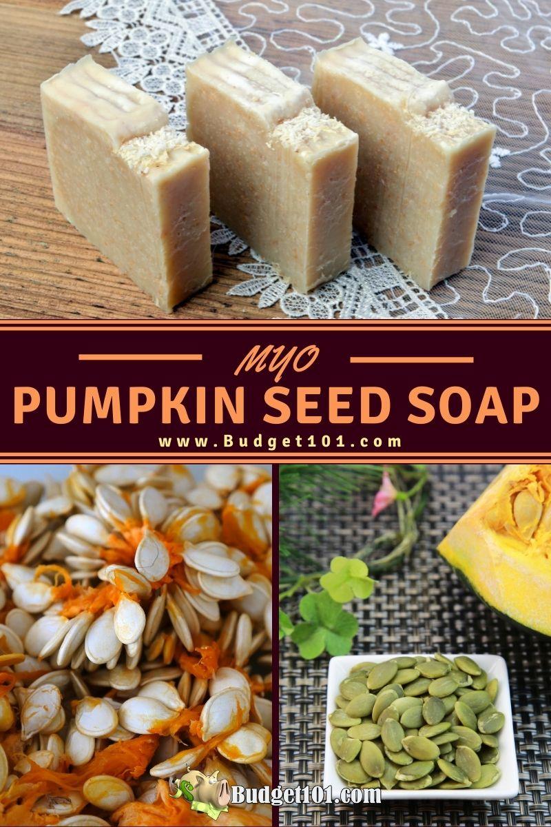 pumpkin seed pumice soap recipe budget101