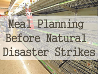 natural disaster meal plans