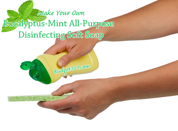 eucalyptus-mint-all-purpose-disinfecting-soft-soap-for-kitchen-and-bath
