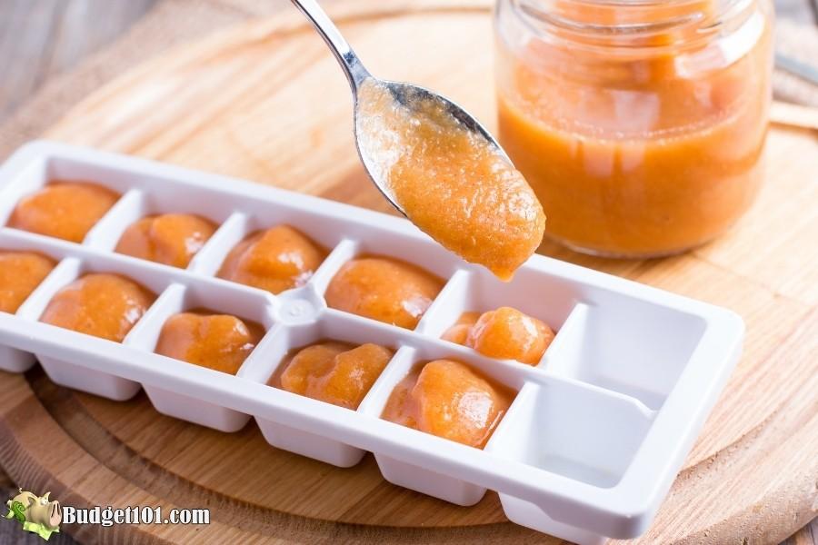 homemade baby food budget101 13