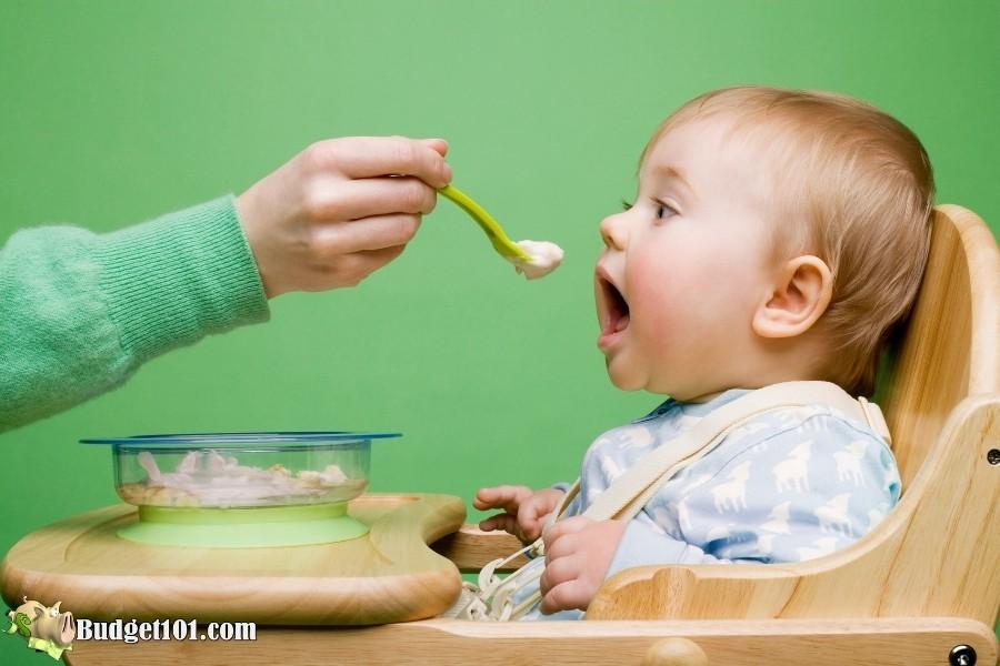 homemade baby food budget101 3