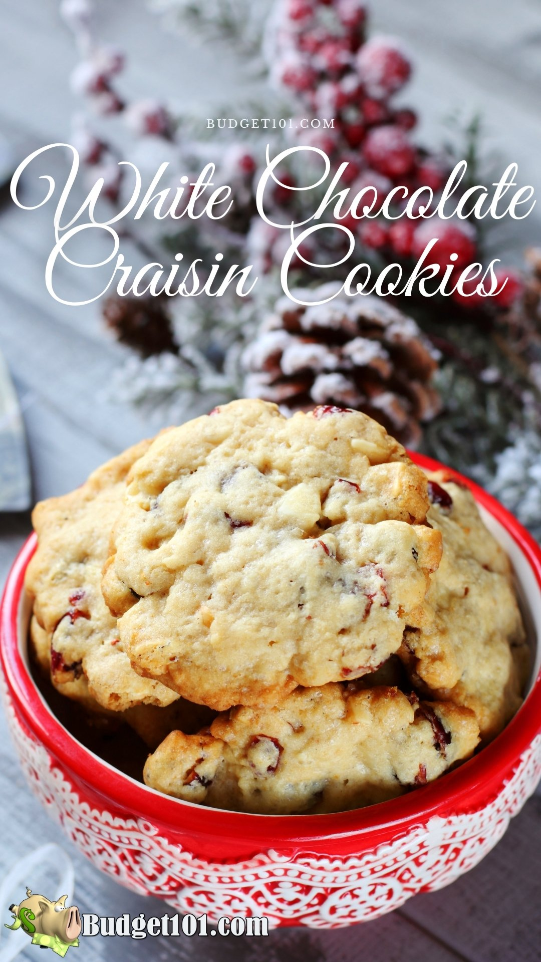 You love to bake? This is the perfect recipe for you! It's a delicious white chocolate craisin Cookie mix that can be made in just 15 minutes. Plus it stores perfectly in your pantry so you have a batch or two on hand until you're ready for a quick dessert, snack, or homemade gift. #Budget101 #CookieMixes #HomemadeMixes #MYOMixes #DirtCheap