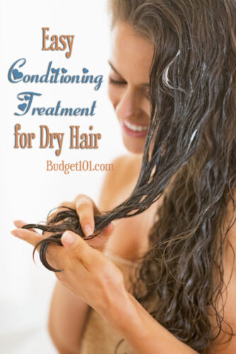 winter conditioner for dry hair recipe
