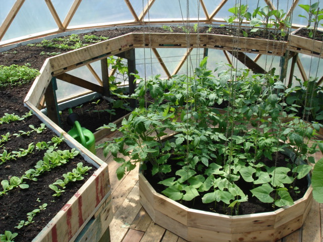 how-to-build-a-geodesic-greenhouse