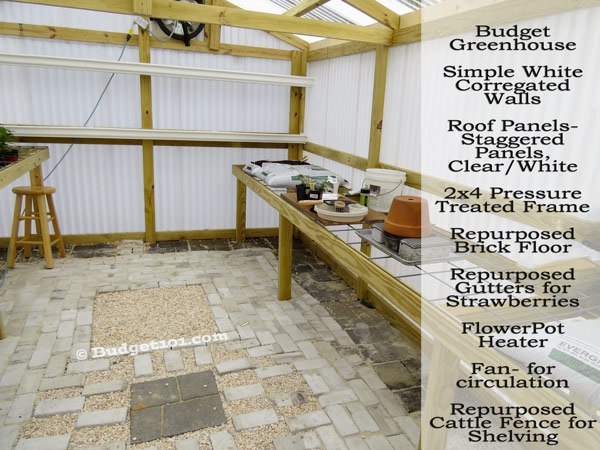 greenhouse-basics-what-you-need-to-know